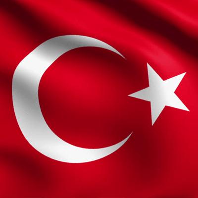 forex investment turkish)